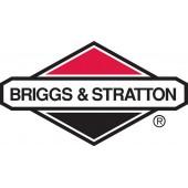 Как заказать запчасти к двигателю Briggs & Stratton